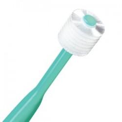 Brush My Teeth Pet Toothbrush Cat